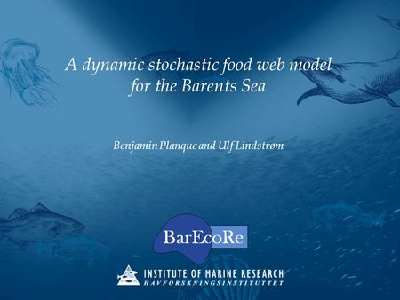 A dynamic stochastic food web model for the Barents Sea Benjamin Planque and Ulf Lindstrøm.