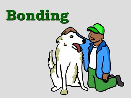 Bonding. Review: bond types, bond energy We have been talking about atomic structure, now we are going to focus on molecules There are 2 types of bonding: