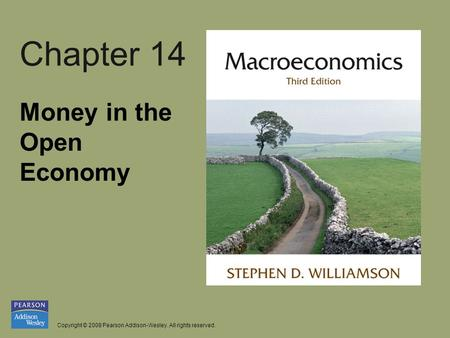 Copyright © 2008 Pearson Addison-Wesley. All rights reserved. Chapter 14 Money in the Open Economy.