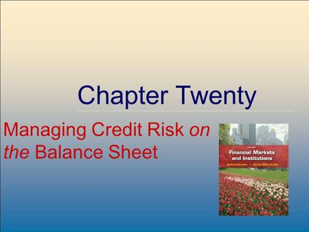 ©2009, The McGraw-Hill Companies, All Rights Reserved 8-1 McGraw-Hill/Irwin Chapter Twenty Managing Credit Risk on the Balance Sheet.