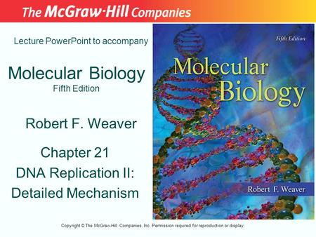 Molecular Biology Fifth Edition Chapter 21 DNA Replication II: Detailed Mechanism Lecture PowerPoint to accompany Robert F. Weaver Copyright © The McGraw-Hill.