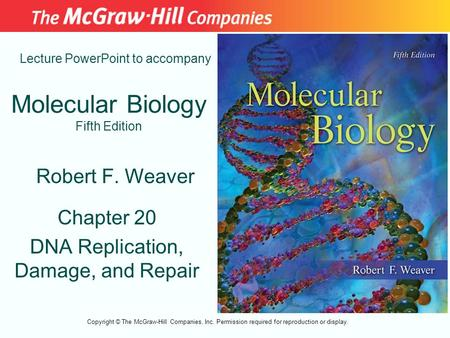 Molecular Biology Fifth Edition Chapter 20 DNA Replication, Damage, and Repair Lecture PowerPoint to accompany Robert F. Weaver Copyright © The McGraw-Hill.