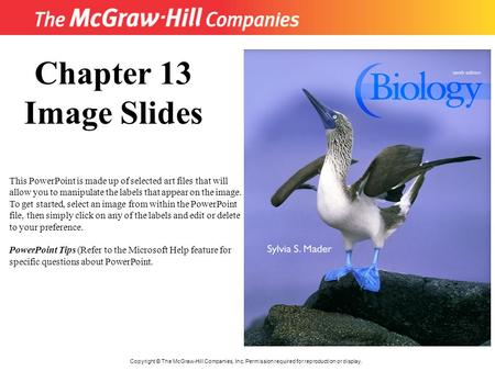 Title Copyright © The McGraw-Hill Companies, Inc. Permission required for reproduction or display. Chapter 13 Image Slides This PowerPoint is made up of.