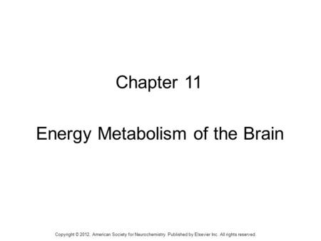 1 Chapter 11 Energy Metabolism of the Brain Copyright © 2012, American Society for Neurochemistry. Published by Elsevier Inc. All rights reserved.