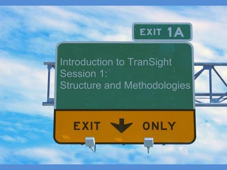 Overview Examples of TranSight Applications What Does TranSight Analyze? Model Structure.