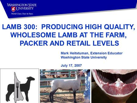 Mark Heitstuman, Extension Educator Washington State University July 17, 2007 LAMB 300: PRODUCING HIGH QUALITY, WHOLESOME LAMB AT THE FARM, PACKER AND.