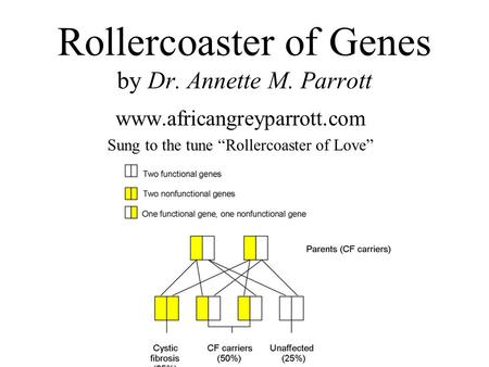 Rollercoaster of Genes by Dr. Annette M. Parrott www.africangreyparrott.com Sung to the tune Rollercoaster of Love.