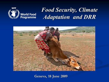 Food Security, Climate Adaptation and DRR Geneva, 18 June 2009.