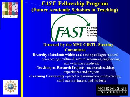 FAST Fellowship Program (Future Academic Scholars in Teaching) Directed by the MSU CIRTL Steering Committee -Diversity of students within and among colleges.