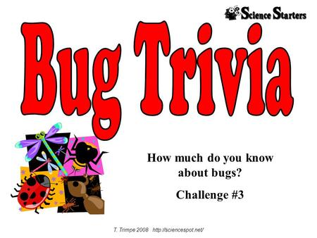 How much do you know about bugs? Challenge #3 T. Trimpe 2008