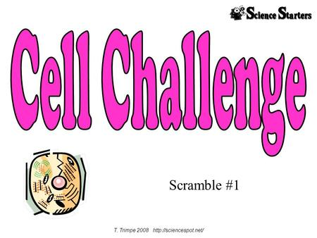 T. Trimpe 2008 http://sciencespot.net/ Cell Challenge Scramble #1 T. Trimpe 2008 http://sciencespot.net/