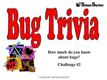 How much do you know about bugs? Challenge #2 T. Trimpe 2008
