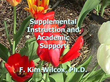 Supplemental Instruction and Academic Support F. Kim Wilcox, Ph.D.