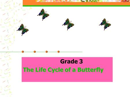 Grade 3 The Life Cycle of a Butterfly Performance Indicators Teacher: As documented through teacher observation, at Level 1, the student is able to 3.4.tpi.2.
