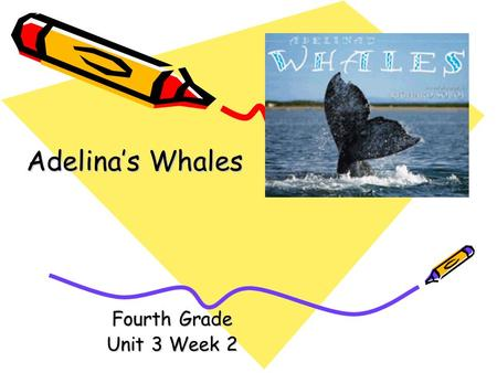 Fourth Grade Unit 3 Week 2 Adelinas Whales Words to Know biologist bluff lagoon massive rumbling tropical.