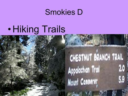 Smokies D Hiking Trails. 850 miles-some old roads, some Indian trails, etc, some built by CCC. Some trails are foot travel only & some both horse/foot.