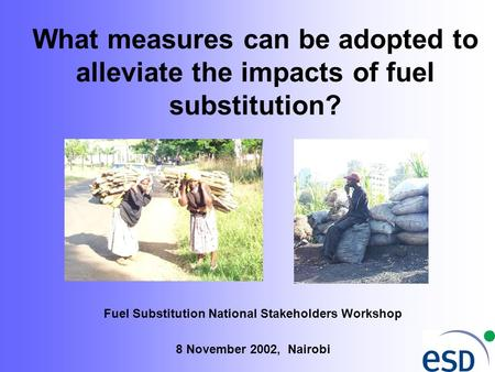 What measures can be adopted to alleviate the impacts of fuel substitution? Fuel Substitution National Stakeholders Workshop 8 November 2002, Nairobi.