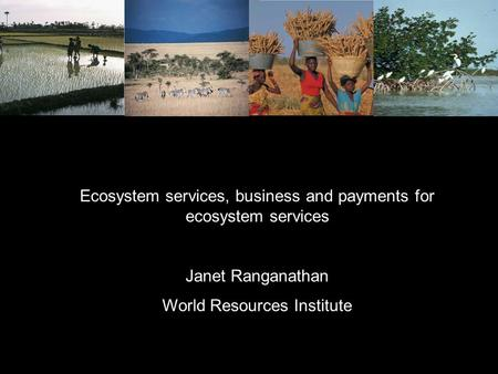 Ecosystem services, business and payments for ecosystem services Janet Ranganathan World Resources Institute.