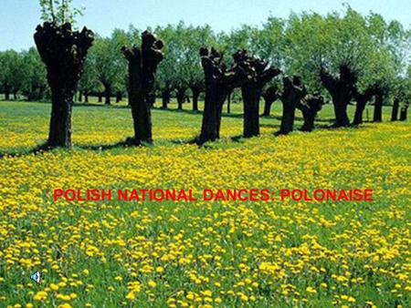 POLISH NATIONAL DANCES: POLONAISE. Polish symbol - the name of the Polish dance later polonaise a form of the name of the Polish polonaise was used in.