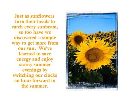 Just as sunflowers turn their heads to catch every sunbeam, so too have we discovered a simple way to get more from our sun. We've learned to save energy.