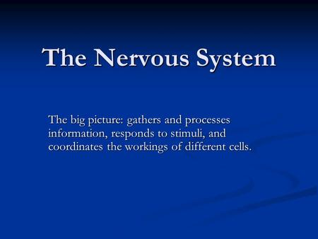 The Nervous System The big picture: gathers and processes information, responds to stimuli, and coordinates the workings of different cells.