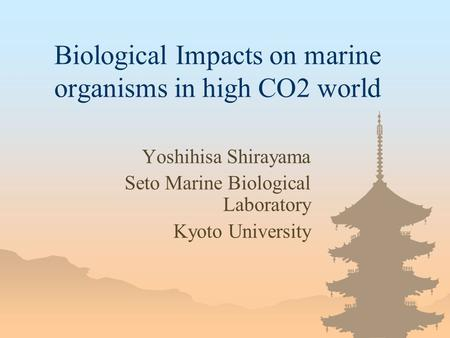 Biological Impacts on marine organisms in high CO2 world Yoshihisa Shirayama Seto Marine Biological Laboratory Kyoto University.