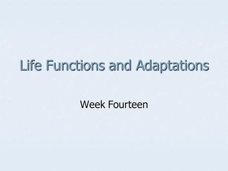 Life Functions and Adaptations Week Fourteen. Arthropods The evolution of arthropods, by natural selection and other processes, has led to fewer body.