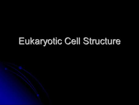 Eukaryotic Cell Structure. Cell Wall Found in cells of plants, fungi, bacteria, and some protists. Found in cells of plants, fungi, bacteria, and some.
