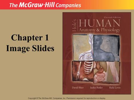 Copyright © The McGraw-Hill Companies, Inc. Permission required for reproduction or display. Chapter 1 Image Slides.