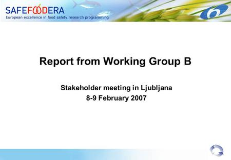 Report from Working Group B Stakeholder meeting in Ljubljana 8-9 February 2007.