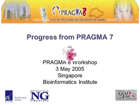Progress from PRAGMA 7 PRAGMA 8 Workshop 3 May 2005 Singapore Bioinformatics Institute.