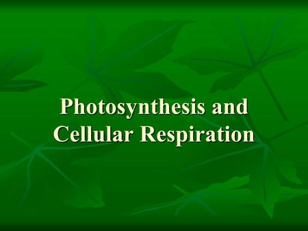 Photosynthesis and Cellular Respiration. Two ways to get food troph = food Autotrophs – Auto = self – Autotrophs make their own food Heterotrophs – Hetero.