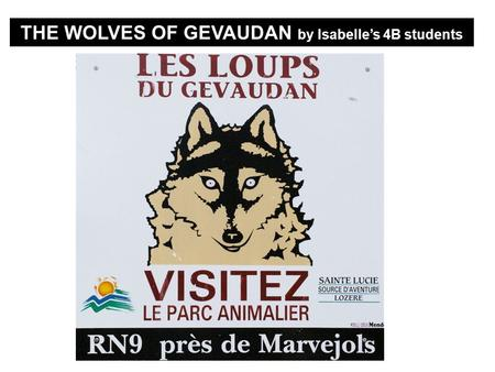 THE WOLVES OF GEVAUDAN by Isabelles 4B students. The Wolves of Sainte Lucies Park Langogne.