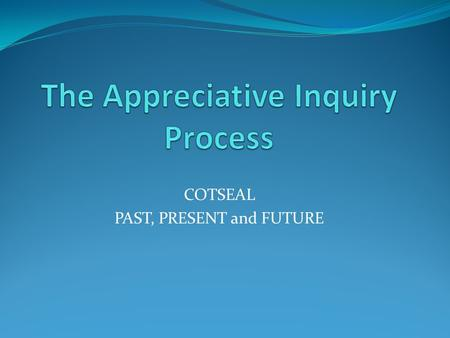COTSEAL PAST, PRESENT and FUTURE. The Basic Two Lenses Seeing the deficits Seeing the good.