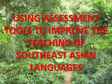 USING ASSESSMENT TOOLS TO IMPROVE THE TEACHING OF SOUTHEAST ASIAN LANGUAGES.