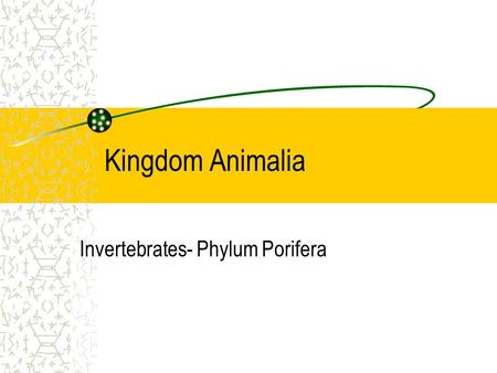 Kingdom Animalia Invertebrates- Phylum Porifera. Sponge Structure Bodies completely lack symmetry (asymmetrical) Masses of specialized cells embedded.