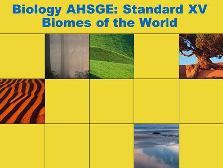 Biology AHSGE: Standard XV Biomes of the World. Biomes and Native Organisms CONTENT STANDARD 15. Identify biomes based on environmental factors and native.
