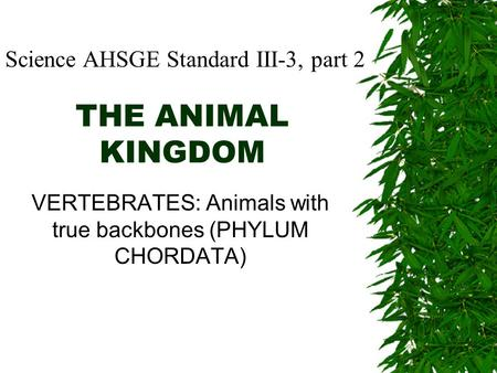 THE ANIMAL KINGDOM VERTEBRATES: Animals with true backbones (PHYLUM CHORDATA) Science AHSGE Standard III-3, part 2.