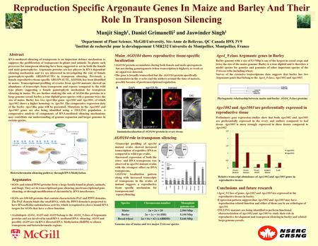 Reproduction Specific Argonaute Genes In Maize and Barley And Their Role In Transposon Silencing Manjit Singh 1, Daniel Grimanelli 2 and Jaswinder Singh.