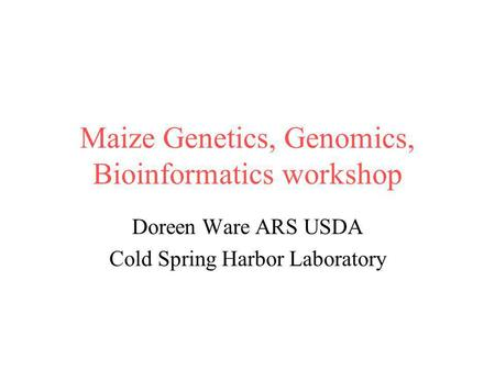 Maize Genetics, Genomics, Bioinformatics workshop Doreen Ware ARS USDA Cold Spring Harbor Laboratory.
