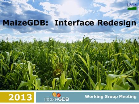 MaizeGDB: Interface Redesign Working Group Meeting 2013.