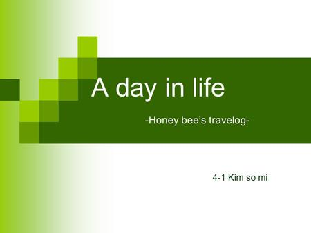 A day in life -Honey bees travelog- 4-1 Kim so mi.