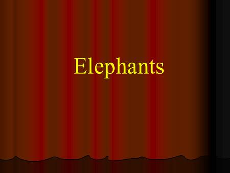 Elephants. Asian elephant Small ears High vertical forehead Females tuskless Proportion of tuskless males varies Loxodonta African elephant Large ears.