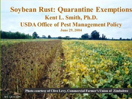 Photo courtesy of Clive Levy, Commercial Farmers Union of Zimbabwe Soybean Rust: Quarantine Exemptions Kent L. Smith, Ph.D. USDA Office of Pest Management.
