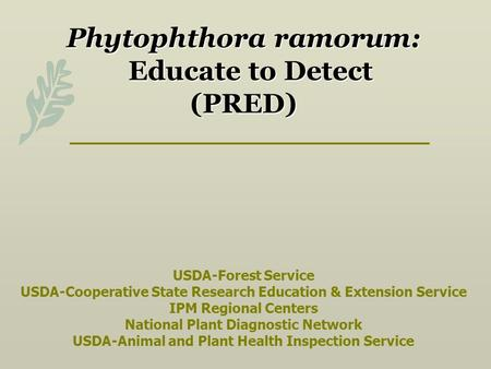 Phytophthora ramorum: Educate to Detect (PRED) USDA-Forest Service USDA-Cooperative State Research Education & Extension Service IPM Regional.