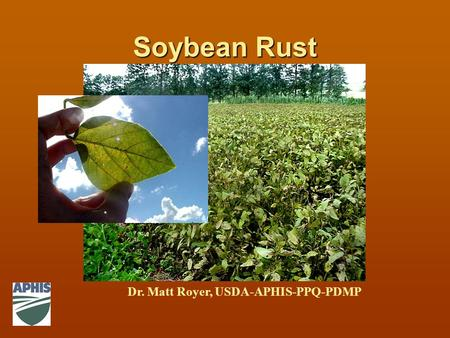 Soybean Rust Dr. Matt Royer, USDA-APHIS-PPQ-PDMP.