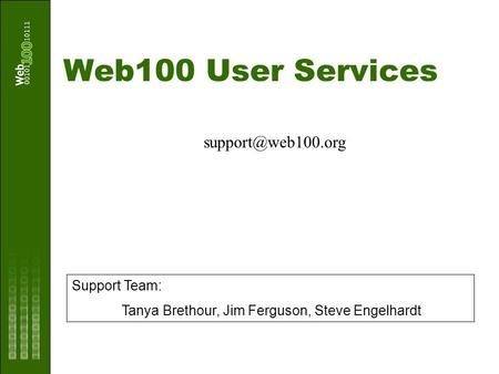 Web100 User Services Support Team: Tanya Brethour, Jim Ferguson, Steve Engelhardt