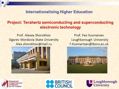 Internationalising Higher Education Prof. Alexey Shorokhov Ogarev Mordovia State University Project: Terahertz semiconducting and.