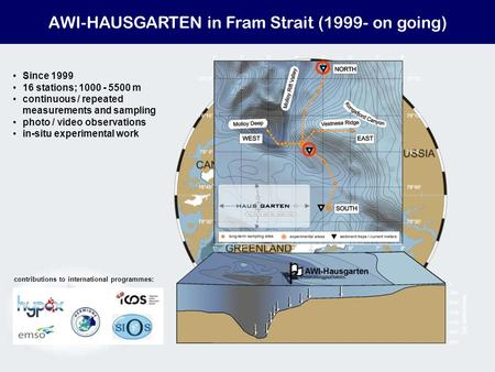 AWI-HAUSGARTEN in Fram Strait (1999- on going) Since 1999 16 stations; 1000 - 5500 m continuous / repeated measurements and sampling photo / video observations.
