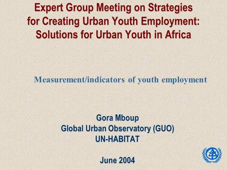 Expert Group Meeting on Strategies for Creating Urban Youth Employment: Solutions for Urban Youth in Africa Gora Mboup Global Urban Observatory (GUO) UN-HABITAT.